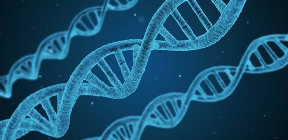 CRISPR si cancerul