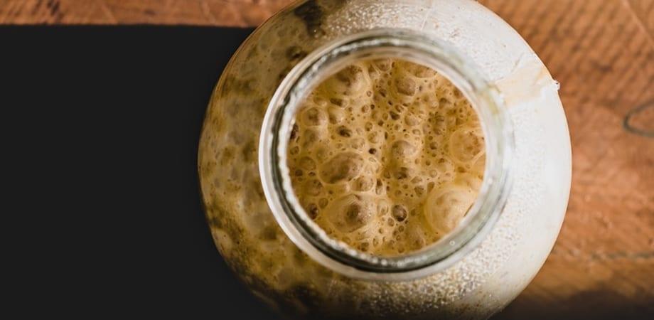 drojdie de bere de la varicoză