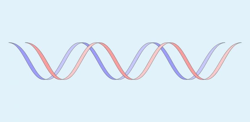 mutatiile BRCA si cancerul