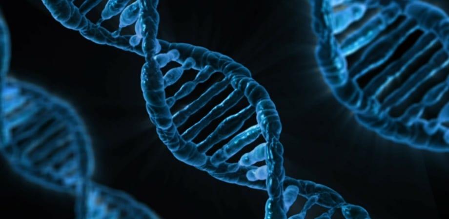 mutatiile BRCA