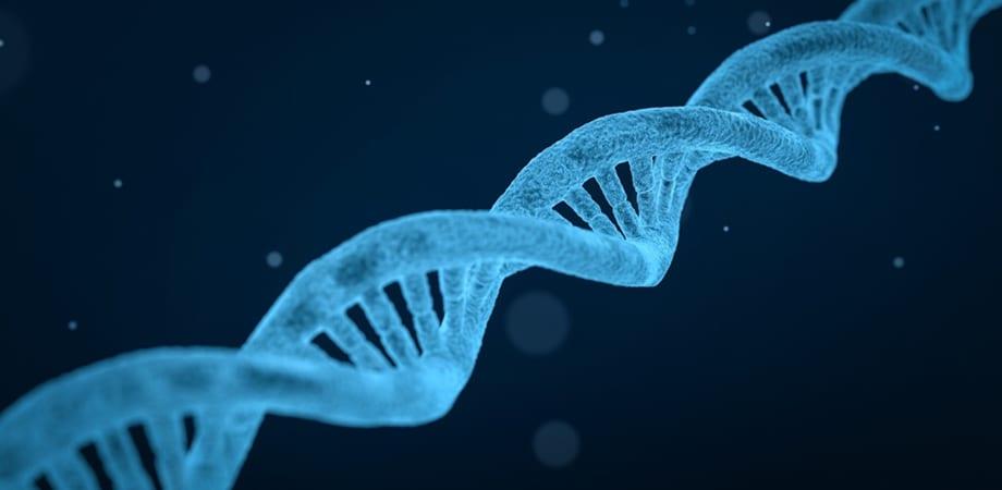 beneficiile testelor genetice